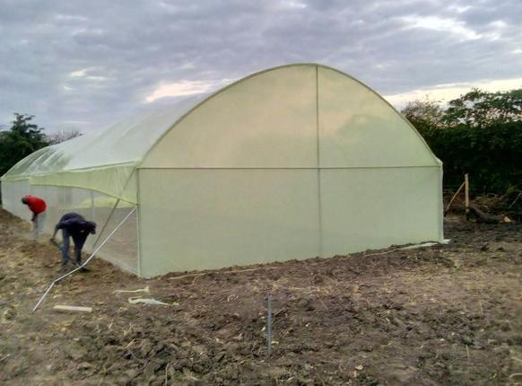MUTANU: the pink garden is taking shape!